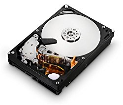 HGST Ultrastar 3.5-Inch 4TB 7200RPM SATA III 6Gbps 64MB Cache Enterprise Hard Drive with 24×7 Duty Cycle (0F14683)