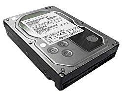 Hitachi Ultrastar A7K3000 2TB 64MB Cache 7200RPM SATA III (6.0Gb/s) Enterprise 3.5-Inch Hard Drive (HUA723020ALA641 (0F12470)) (Certified Refurbished)