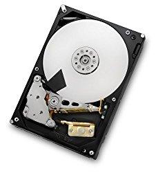 HGST Deskstar 3TB 3.5-Inch 7200RPM SATA III 6Gbps 64 MB Cache Internal Hard Drive (0F12450)