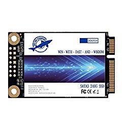 Dogfish Msata 240GB Internal Solid State Drive Mini Sata SSD Disk