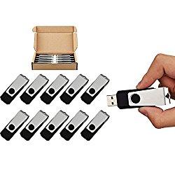 TOPESEL 10 Pack 2GB USB Flash Drives Memory Stick Swivel Bulk USB Thumb Drive, Black
