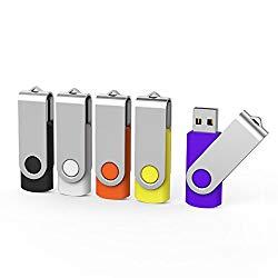 Aiibe 5 Pack 64GB USB Flash Drive 64 GB Flash Drives Thumb Drive Swivel USB Stick USB 2.0 Pen Drive (64G, 5 Mixed Colors: Black Red Yellow White Purple)