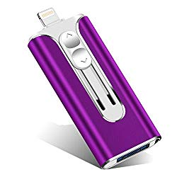 iOS Flash Drive 512GB iPhone Memory Stick,XiangGao Thumb Drive USB 3.0 Lightning Memory Stick for iPhone iPad Android and Computers (512gb, DT- Purple)